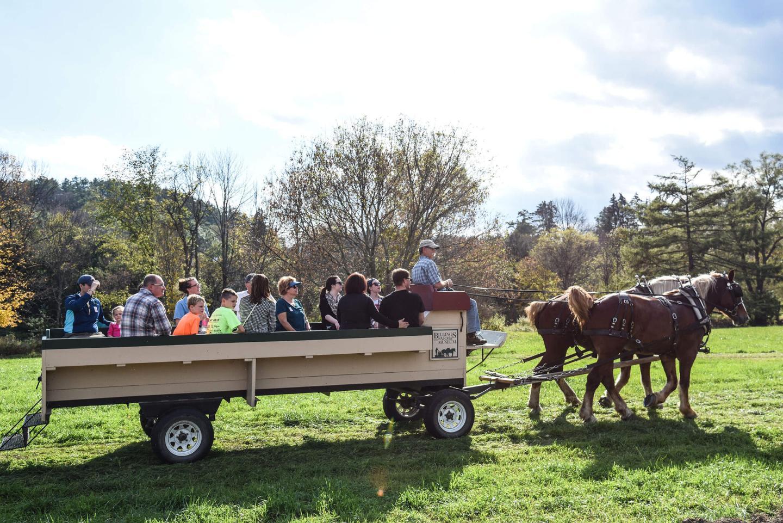 Autumn Wagon Ride Weekend The Woodstock Inn And Resort